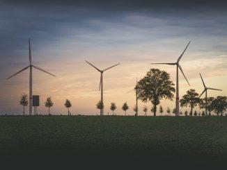Handelskammertag vergibt Umweltpreis