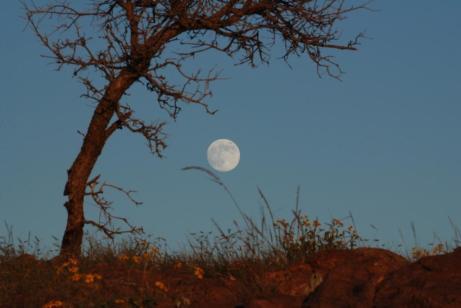 Full Moon Over Fort Davis