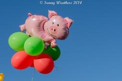 Piggy Balloons