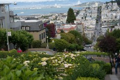 This is the curvy part of Lombard St
