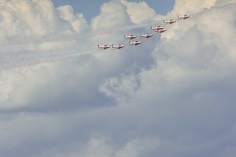 Snowbirds behaving
