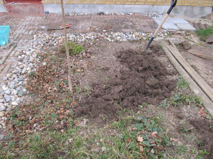 Lettere med bede? Så fortæl hvad jeg skal plante her for at få en have, som er lettere at vedligeholde! Ved gravning et spadestik ned støder man på gult ler - undergrunden er jo moræneler