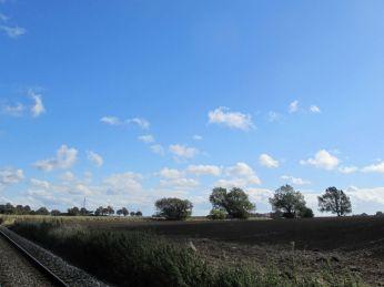 En Ruisdael himmel mod øst - samme mark