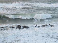 Se hvordan kystværnet er under vand!