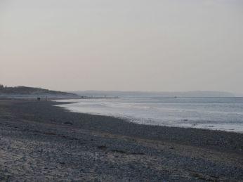 Stængehage - en smule rev er der her, gad vide hvordan det overlever stormene, som slider så meget af kysten
