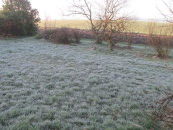 Kl. 7:20 er græsset meget mere hvidt