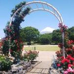 富士市中央公園