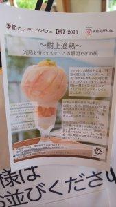 【山梨県 河口湖】富士大石ハナテラス 葡萄屋kofuハナテラスCafe