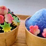 山梨県 【麩の岡田屋】『生麩のかき氷』ダヤンテールblog