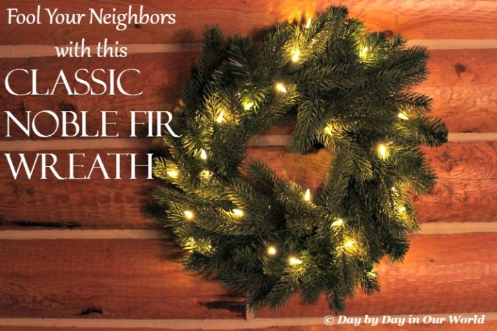 Fool Your Neighbors with the Classic Noble Fir Wreath from Tree Classics