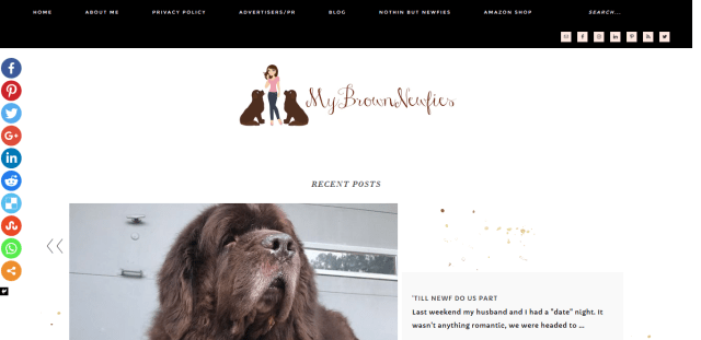 Screenshot 2018 07 30 mybrownnewfies com Its their world I just live in it  - 4 incredibly adorable and hilarious blogs about dogs to check out