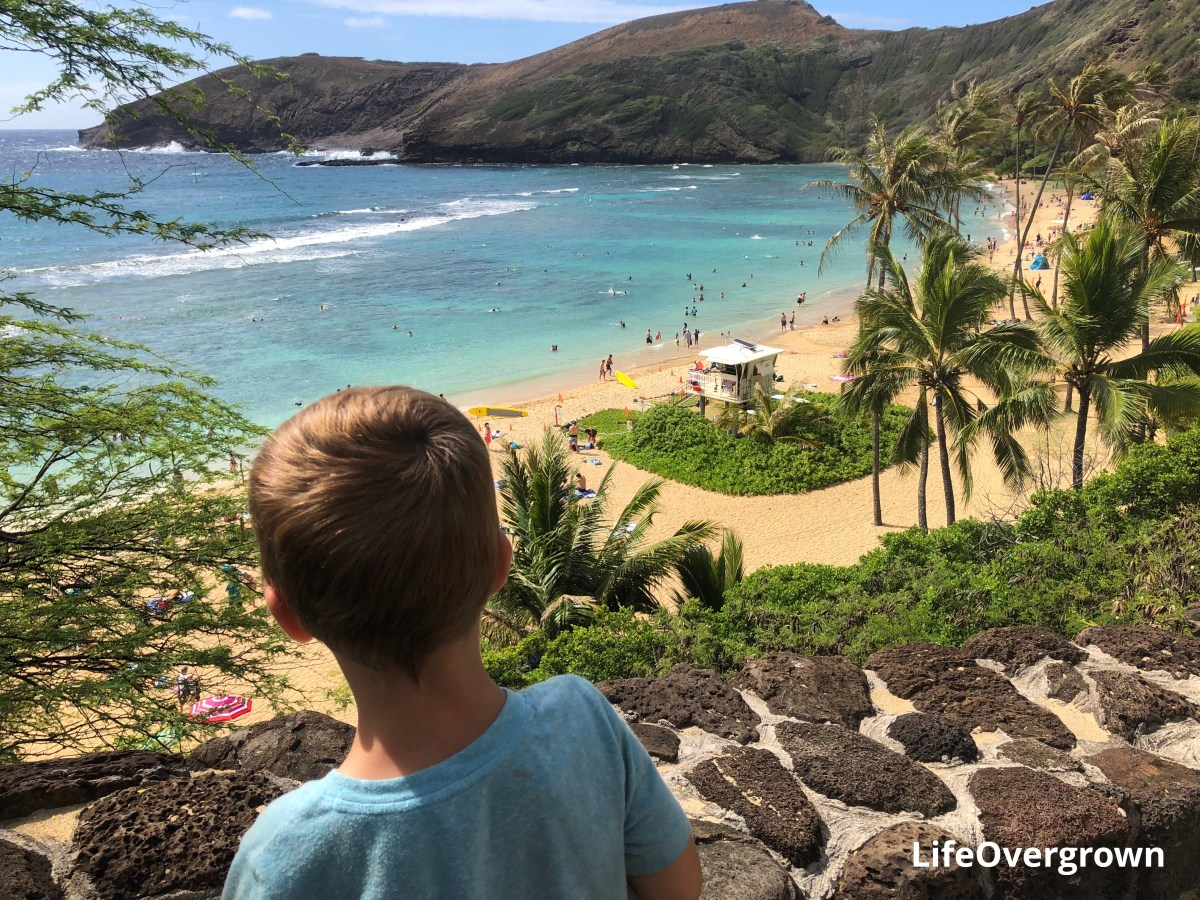 Hanauma bay snorkeling with kids, family travel, oahu hawaii, childrens activities, adventure