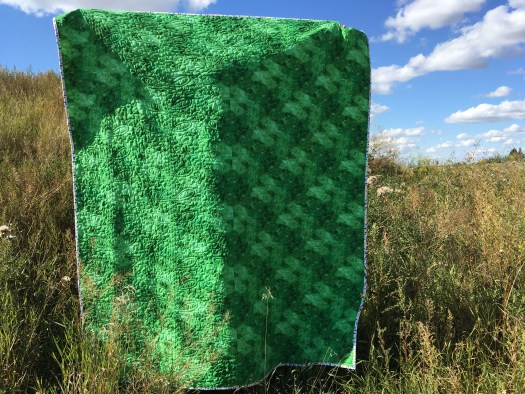 The backing of the quilt is a mottled green fabric.