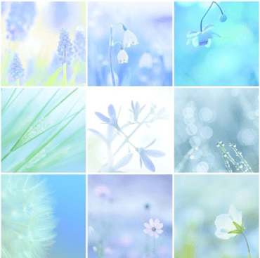 Instagram 3_yurikonoiro2 Japanese photographer neon colors