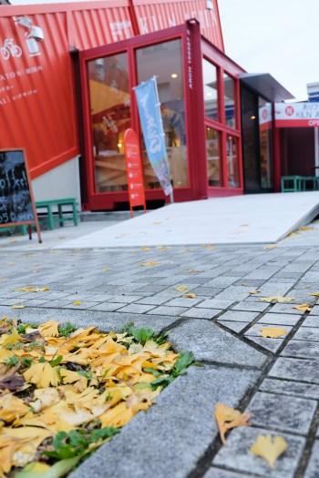 arita-autumn-leaves-japan-sightseeing