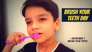 National Brush Day on November 1