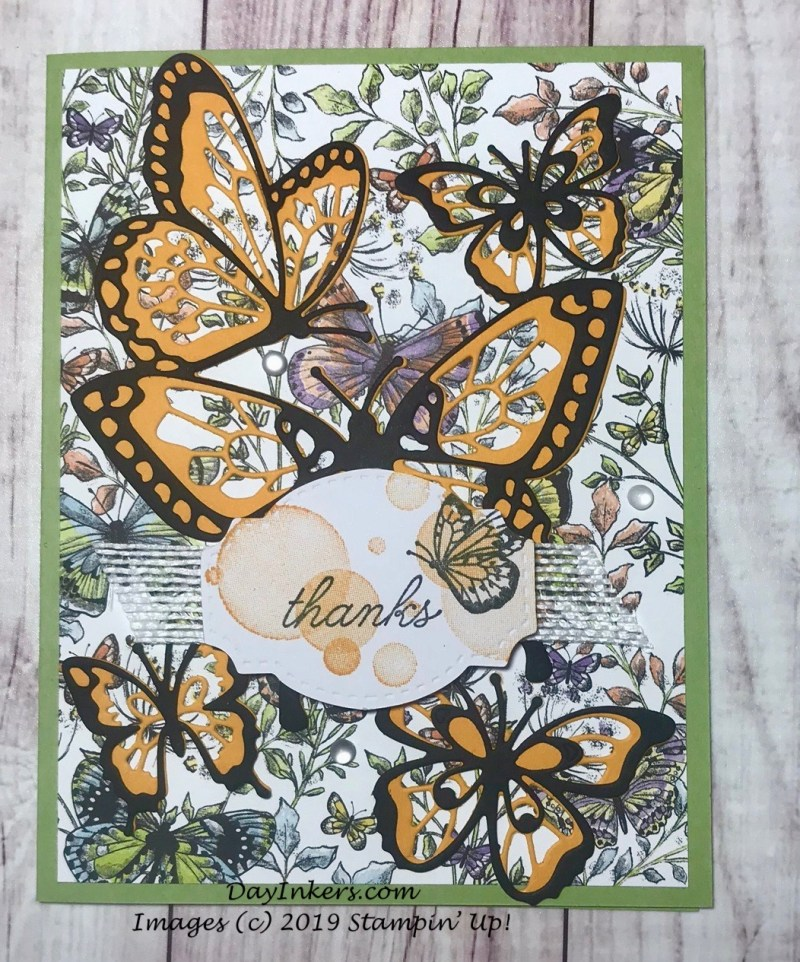 Stampin' Up! Beauty Abounds Butterfly Thank you card