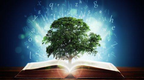 El valor de la escritura (cinco conceptos clave)