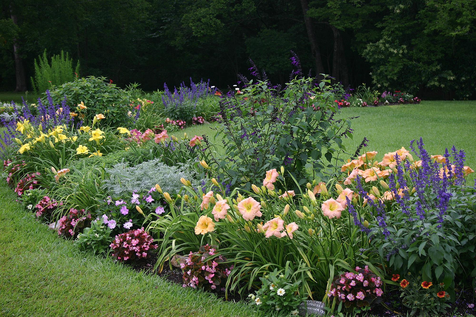 Scene from Billingslea Garden