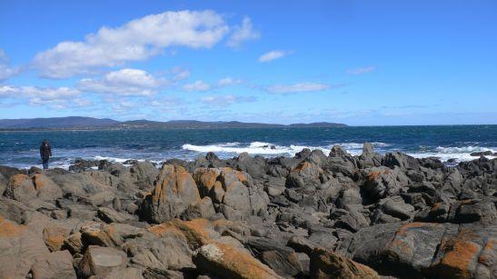Where the Tamar River meets Bass Strait