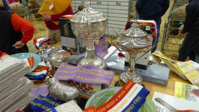 Shiny silverware & ribbons to be won