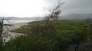 Looking back towards Tidal River along Norman Beach