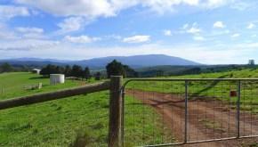 Mt Erica & farm