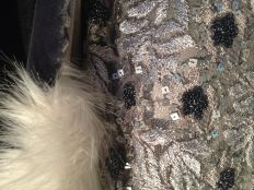 Close-up of silver dress & velvet coat