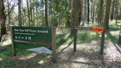 One Tree Hill Picnic Ground - there's also car parking outside the gate.