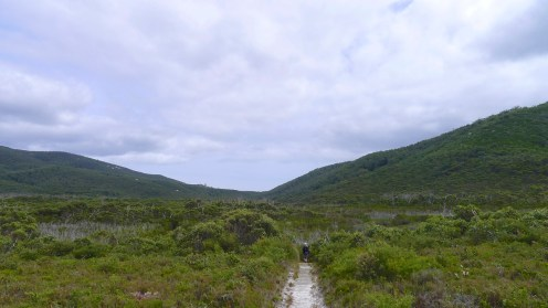 5/18 Off the dune, down into the swamp