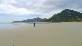 A lonely windswept beach under a cloudy sky - glorious except we were low on water and tired