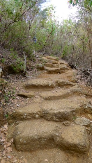 3/12 Steps are easy enough, except when you're tired