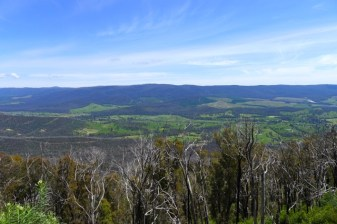 Above the treeline now, looking down to the Maroondah Highway from Razorback Track