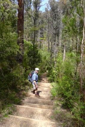 Nov 2014 - First challenge - walking down MacLennan's Gully to cross Jawbone Creek