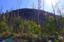 Sugarloaf Peak from Cerberus Road