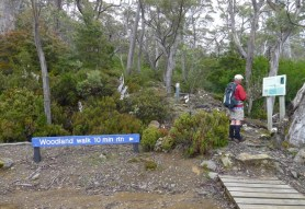 Stephen stopped to read the sign, but it's not a shortcut back to Lake Fenton Carpark
