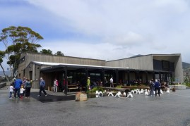 The Wine Bar is a popular venue for lunch