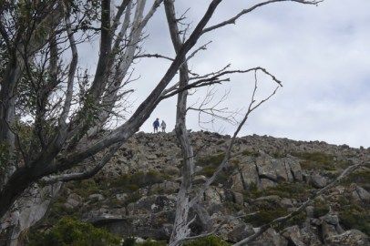 Walkers coming down off the summit of Mt Field East