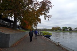 Autumn leaves provide plenty of colour to the city