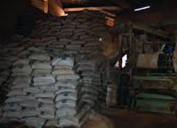 FEED MILL BUSINESS PLAN IN NIGERIA 1