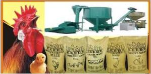FEED MILL BUSINESS PLAN IN NIGERIA