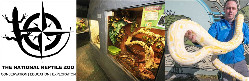 national reptile zoo kilkenny