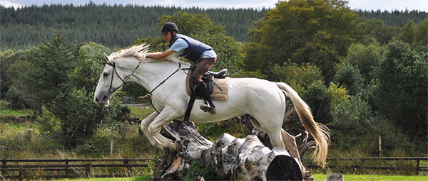 horse-riding-holidays-ireland-slieve aughty riding centre