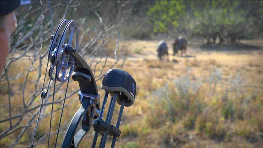 Control the heart-thumping thrill in Bowhunting