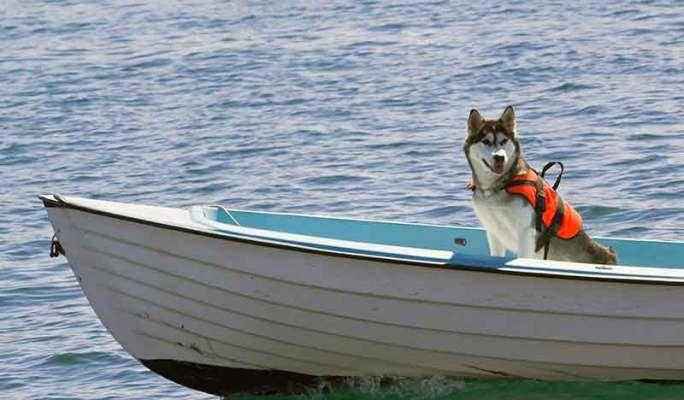Basic Boating Safety Tips