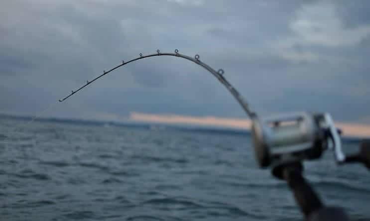 best downrigger rod for salmon