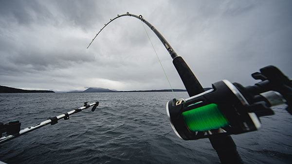 Trolling Lake Trout with Downriggers