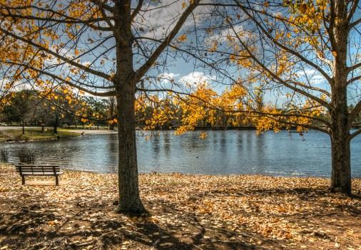 lake-canobolas-Orange-8
