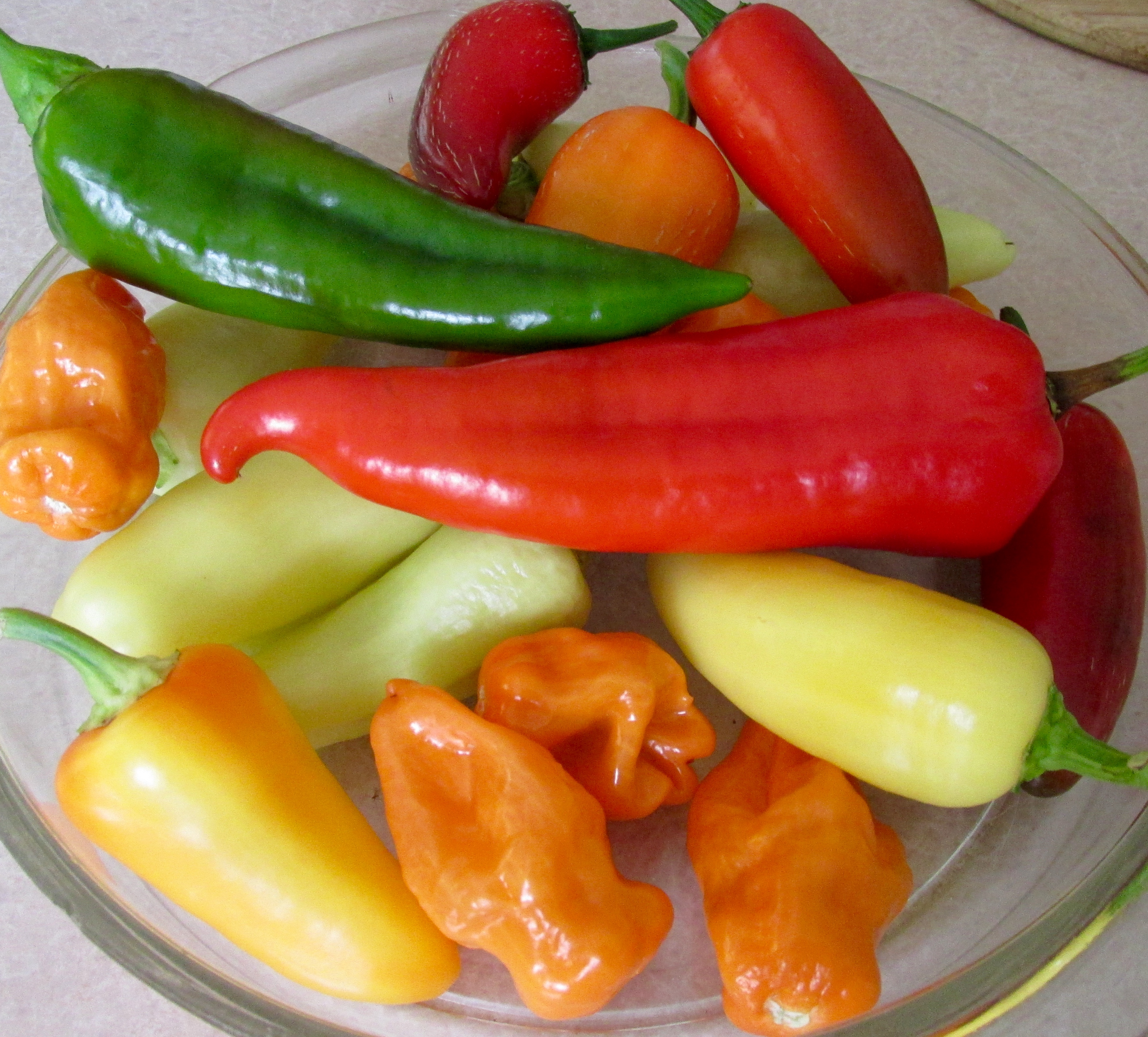 Scheepers Kitchen Garden Seeds Sweet Bell Peppers Hot Chile Peppers And Frying Peppers