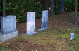 Stones Standing in Dean Cemeteru